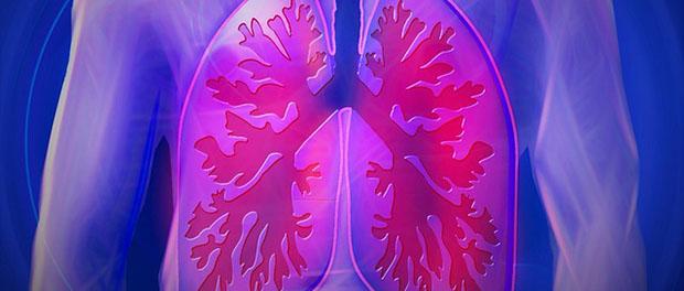 Zaštitite pluća